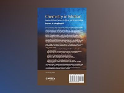 Chemistry in Motion: Reaction-Diffusion Systems for Micro- and Nanotechnolo av Bartosz A. Grzybowski