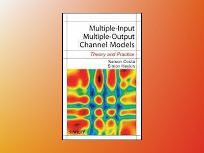 Multiple-Input Multiple-Output Channel Models: Theory and Practice av Nelson Costa