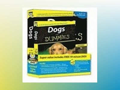Dogs For Dummies , 2nd Edition DVD Bundle av Gina Spadafori