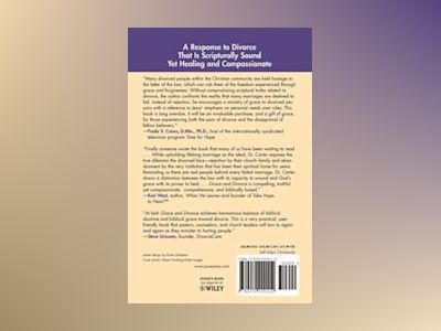 Grace and Divorce: God's Healing Gift to Those Whose Marriages Fall Short av Les Carter