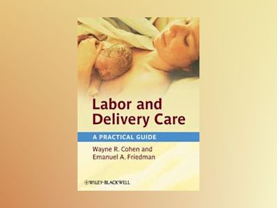 Labor and Delivery Care: A Practical Guide av Wayne R. Cohen