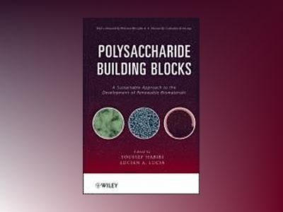 Polysaccharide Building Blocks: A Sustainable Approach to the Development o av Youssef Habibi