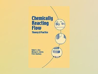 Chemically Reacting Flow: Theory and Practice av Robert J. Kee