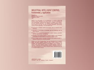 Industrial intelligent control - fundamentals and applications av Y.z. Lu
