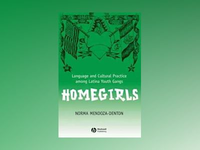 Homegirls: Language and Cultural Practice Among Latina Youth Gangs av Norma Mendoza-Denton