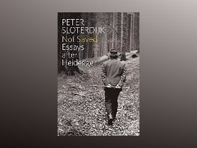 Not Saved: Essays After Heidegger av Peter Sloterdijk