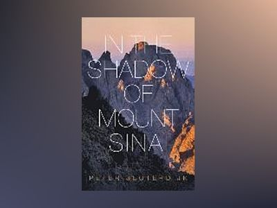 In The Shadow of Mount Sinai av Peter Sloterdijk