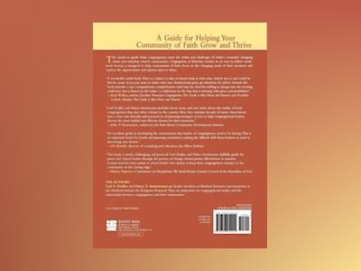 Congregations in Transition: A Guide for Analyzing, Assessing, and Adapting av Carl S. Dudley