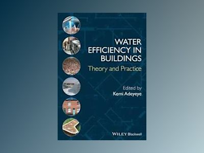 Water Efficiency in Buildings: Theory and Practice av K. Adeyeye
