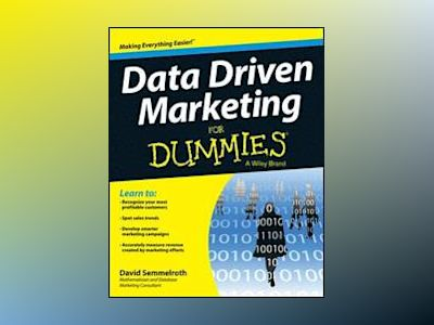 Data Marketing For Dummies av David Semmelroth