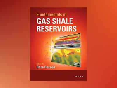 Fundamentals of Gas Shale Reservoirs av Reza Rezaee
