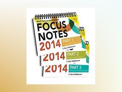 Wiley CIA Focus Notes 2014: Complete Set av S. Rao Vallabhaneni