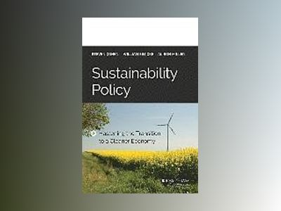 Sustainability Policy: Hastening the Transition to a Cleaner Economy av Steven Cohen