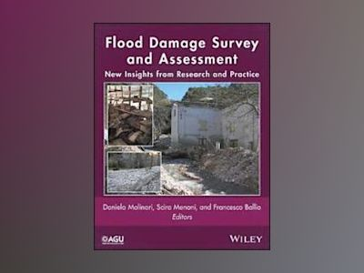 Flood Damage Survey and Assessment: New Insights from Research and Practice av Daniela Molinari