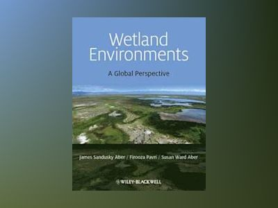 Wetland Environments av Aber