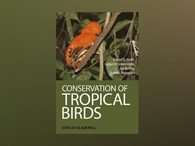 Conservation of Tropical Birds av Navjot S Sodhi