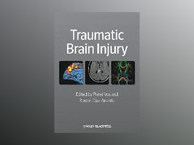 Traumatic Brain Injury av Vos