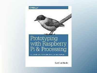 Prototyping with Raspberry Pi & Processing av Gottfried Haider