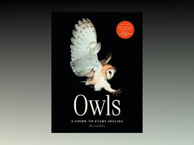 Owls - a guide to every species av Marianne Taylor
