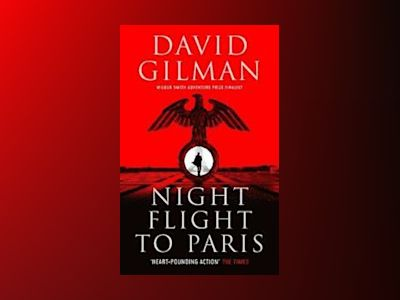 Night Flight To Paris av David Gilman