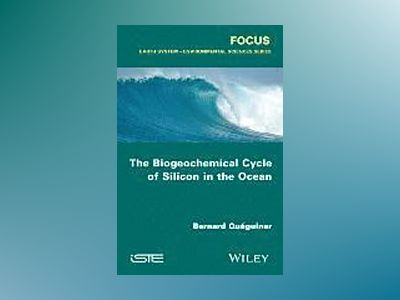 The Biogeochemical Cycle of Silicon in the Ocean av Bernard Quéguiner