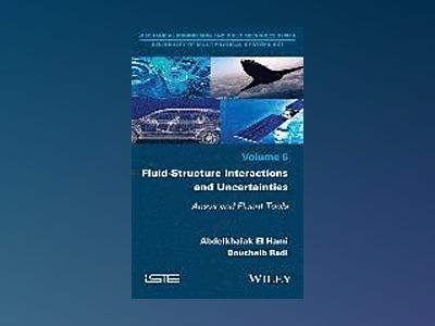 Fluid-Structure Interactions and Uncertainties: Ansys and Fluent Tools av Bouchaib Radi