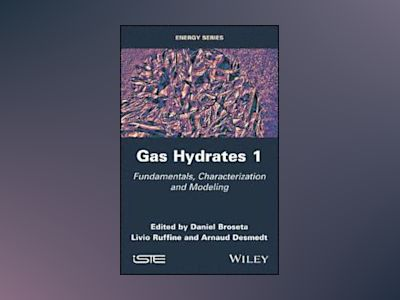 Gas Hydrates: From Characterization and Modeling to Applications av Daniel Broseta