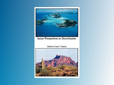 Issuer Perspectives on Securitization av Frank J. Fabozzi