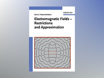 Electromagnetic Fields - Restrictions and Approximation av Boris Z. Katsenelenbaum
