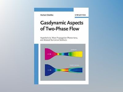 Gasdynamic Aspects of Transient Two-Phase Flow: Wave Propagation Phenomena, av Herbert Städtke