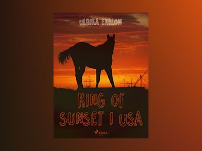 Ljudbok King of Sunset I USA