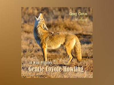 Ljudbok Gentle Coyote Howling in Wild Prairies