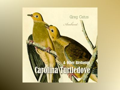 Ljudbok Carolina Turtledove and Other Birdsongs