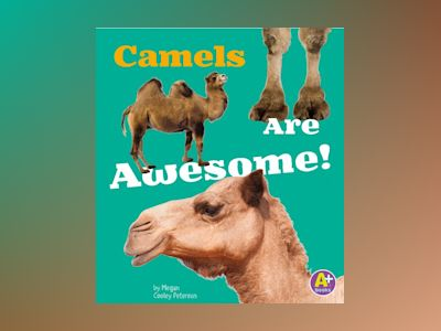 Ljudbok Camels Are Awesome!