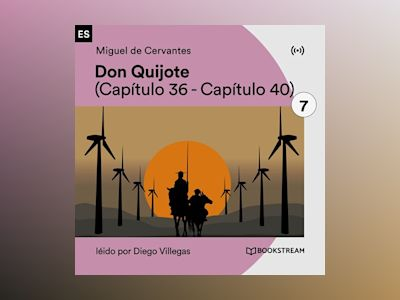 Don Quijote 7