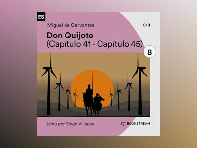Don Quijote 8