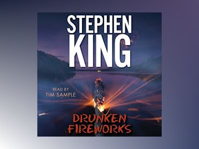Audio book Drunken Fireworks - Stephen King
