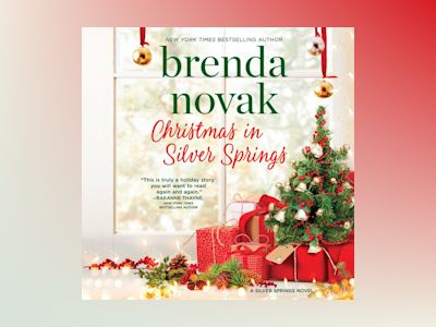 Audio book Christmas in Silver Springs