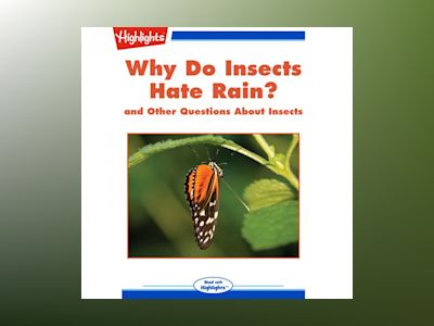 Why Do Insects Hate Rain?: and Other Questions About Insects