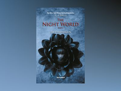 The Night World #4: Skytsenglen