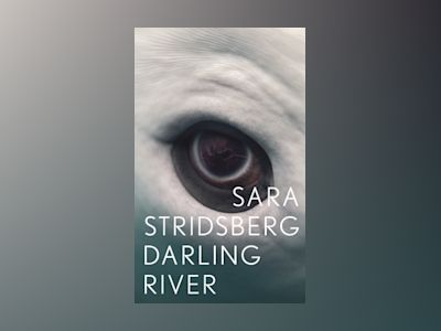 E-Bok Darling River - Sara Stridsberg