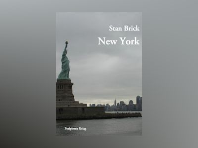 E-Bok New York - Stan Brick