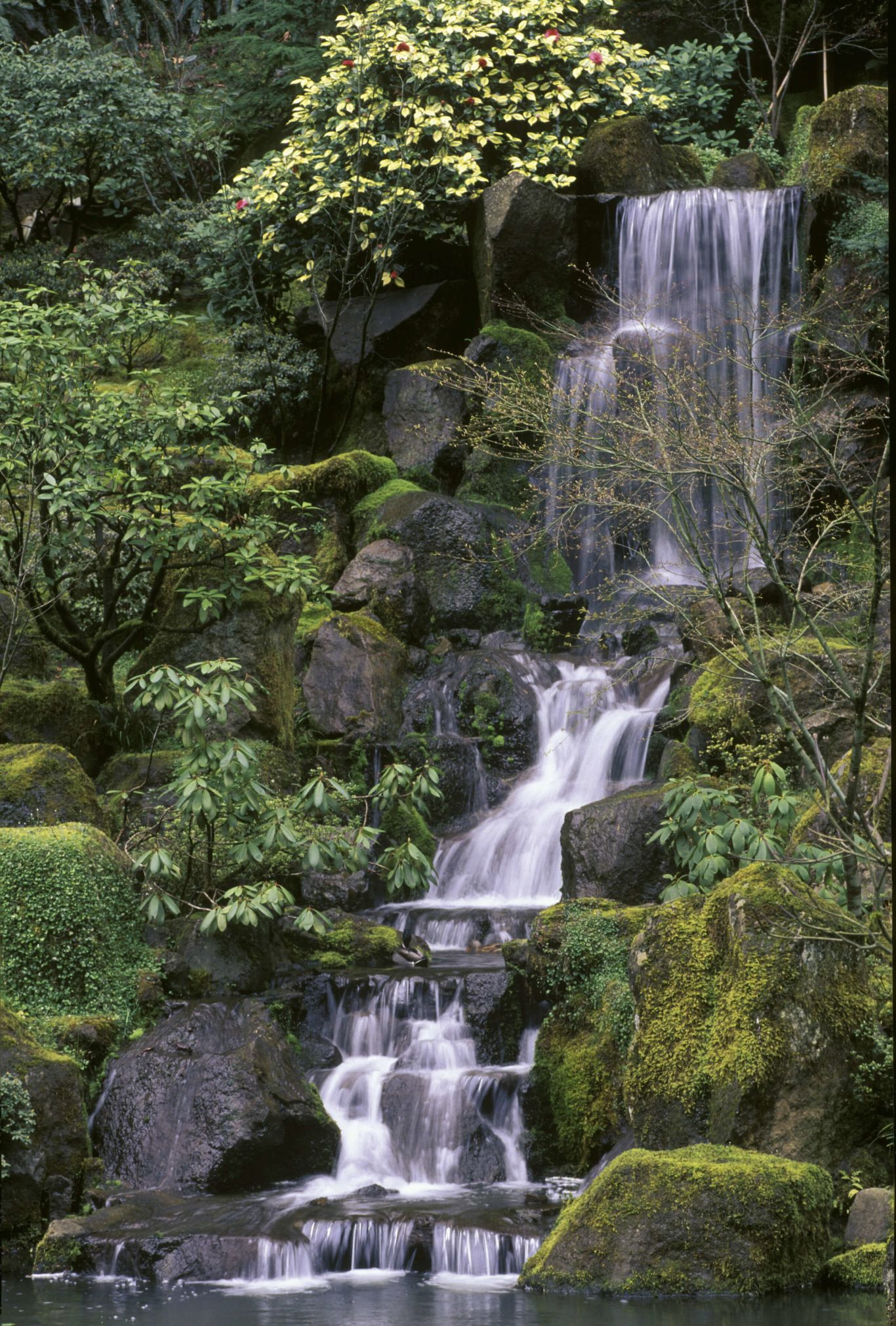 Heavenly Falls waterfall at Portland Japanese Garden