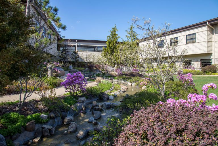 view of stream, garden, and buildings at Rosecrance Griffin Williamson Campus