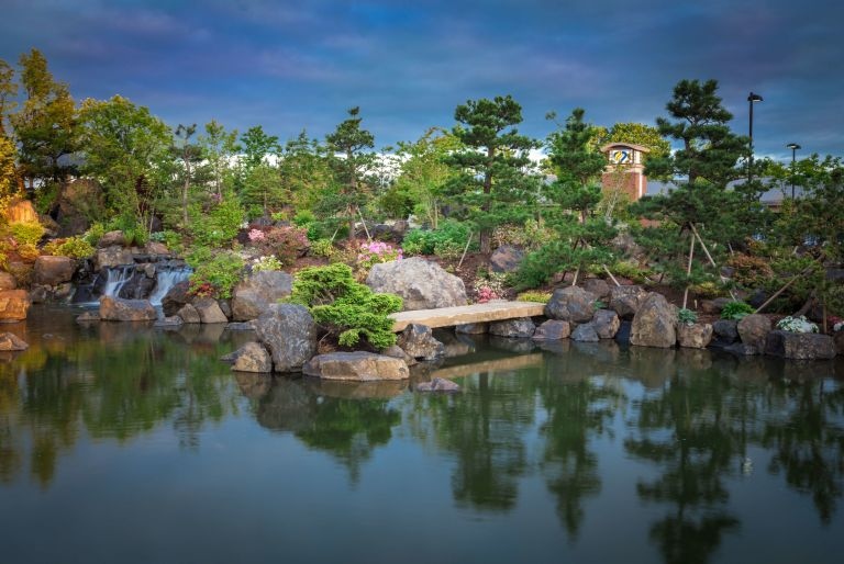 pond with boulders and trees in background at Samaritan Lebanon Health Sciences Campus