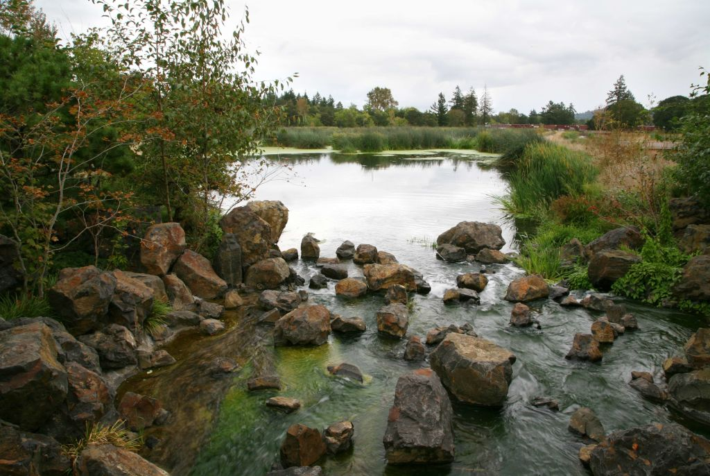 pond and rocks at Talking Water Gardens