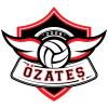 Özateş Voleybol Kulübü