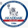 Akademik Batı Dilleri
