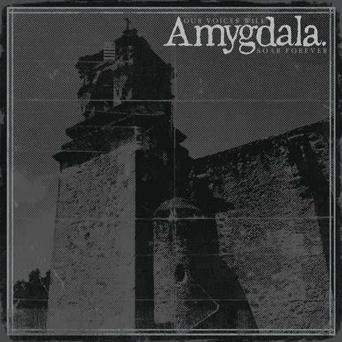 Amygdala - Our Voices Will Soar Forever by Amygdala