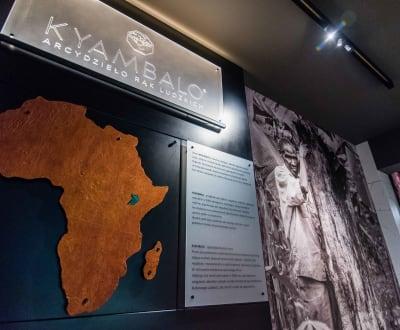 Kyambalo - showroom